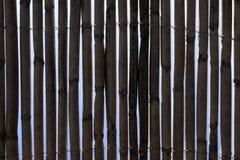 bambustaket Arkivfoto