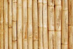 Bambustaket Background Close Up Royaltyfri Fotografi