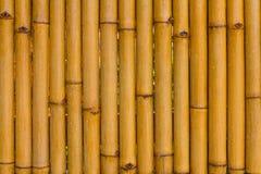 Bambustaket, regn som är vått Royaltyfri Bild