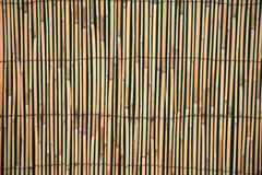 bambustaketpanel Arkivfoton