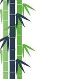 Bambustambakgrund Royaltyfri Fotografi