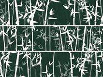Bambuswaldsatz nave Japan oder China Grünpflanzebaum mit Blättern Regenwald in Asien lizenzfreie abbildung