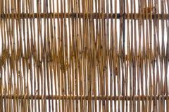 Bambuswand im Himmel Lizenzfreie Stockbilder