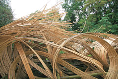 Bambuswellen Stockbilder