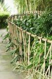 Bambuszaun Stockfotos