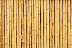 Bambuszaun Stockfoto
