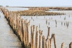 Bambuszaun schützen Sandbank vor Seewelle Lizenzfreies Stockbild