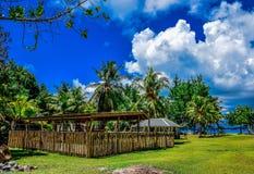 Bambuszaun und Palmen Lizenzfreie Stockfotos
