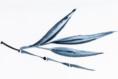 Bambuszweig gezeichnet durch schwarze Aquarelle stockbild