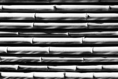 Bambutextur i svartvitt Royaltyfria Foton