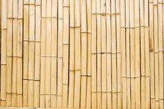 bambuvägg Arkivbild