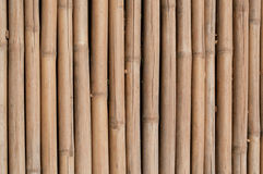 bambuvägg Arkivfoton