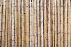 Bambuvägg, bambustaketbakgrund Royaltyfria Bilder