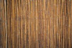 Bambuvägg eller bambustakettextur Arkivfoto