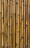 bambuväggar Royaltyfri Fotografi
