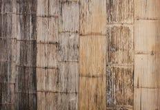 Bambuväggar Arkivbild