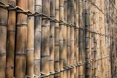 Bambuväggbakgrund royaltyfri bild