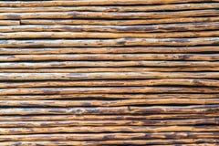 Bambuväggmodell Royaltyfria Bilder