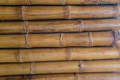 Bambuväggmodell Arkivbilder
