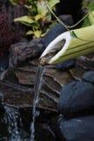 Bambuvattenspringbrunn arkivfoton