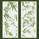Bambuvektorillustration Arkivfoton