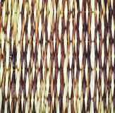 Bambuväv Royaltyfri Fotografi