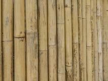 Bammboo vägg i Krabi Royaltyfri Bild