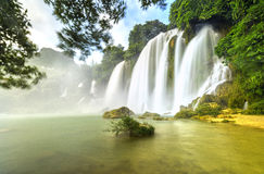 Ban Gioc Waterfall. With lakeside tree foreground, smooth flow of water, creating in a waterfall down the white silk sheets high side mountains, sunny yellow Royalty Free Stock Photography