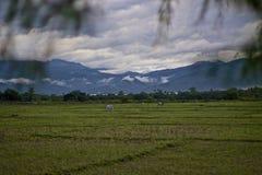 Ban Huai Nam Dip Stock Images