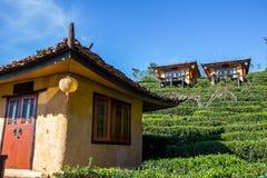 Earthen buildings and U-Long tea plantations at Ban Rak Thai Village,near Thai-Myanmar border,Mae Hong Son province,Northern Thail. Ban Rak Thai VillageCommunity Royalty Free Stock Images