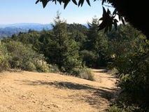 Bana över kullar Royaltyfri Fotografi