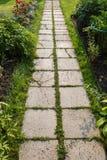 bana av konkreta tegelplattor i trädgård Arkivbild