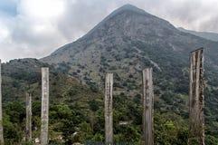 Bana av vishet på den Lantau ön Hong Kong Arkivfoto