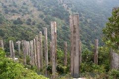 Bana av vishet på den Lantau ön Hong Kong Royaltyfria Foton