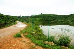 Bana eller vandringsled till och med blandad skog nära sjön Banabortgång Arkivbilder