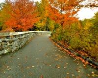 Bana för stenvägg till den färgrika höstskogen royaltyfri fotografi