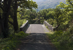 Bana i den Killarney nationalparken i cirkel av Kerry i Irland fotografering för bildbyråer