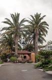 Bana i en borggård med palmträd Royaltyfri Foto
