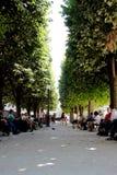 Bana i en parkera i Paris Frankrike Fotografering för Bildbyråer