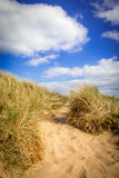 Bana i en sanddyn royaltyfria foton