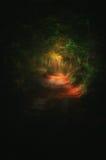 bana i mörk skog med ljus på slutet arkivbilder