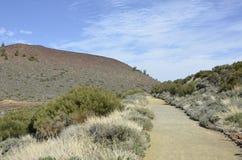 Bana i nationalparken el Teide Arkivbilder