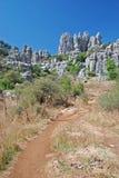 Bana i naturlig Park Royaltyfria Bilder