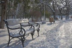 Bana i parkera med snö Royaltyfri Foto
