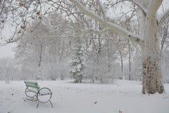 Bana i parkera med snö Royaltyfria Bilder