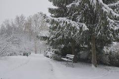 Bana i parkera med snö Royaltyfria Foton