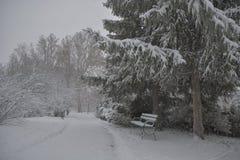 Bana i snön med bänken och träd Arkivfoton