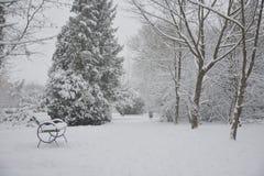 Bana i snön med bänken och träd Royaltyfri Fotografi