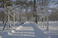 Bana i snowen Royaltyfri Foto