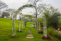 Bana i trädgård Arkivfoto
